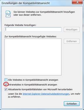 DocuProtection FAQ - MS Internet Explorer 10